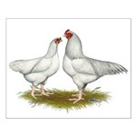 Ixworth Chickens Small Poster