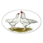 Ixworth Chickens Sticker (Oval 10 pk)