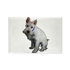 Miniature Schnauzer Rectangle Magnet (100 pack)