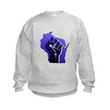 Wisconsin Solidarity Blue Fis Sweatshirt