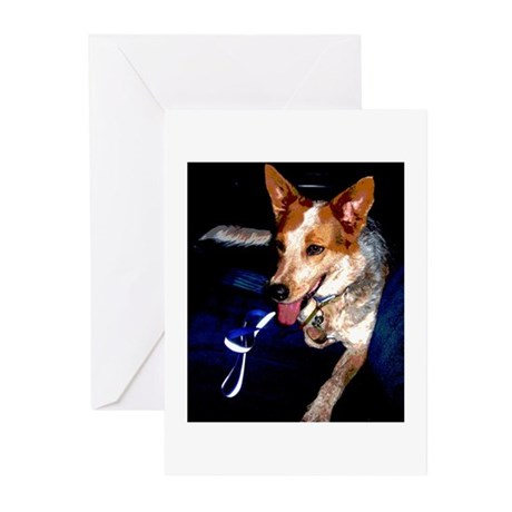 Red Heeler Greeting Cards (Pk of 10)