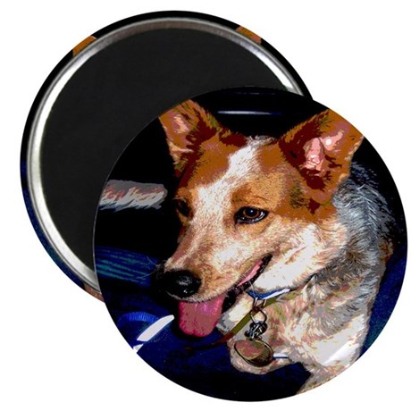"Red Heeler 2.25"" Magnet (100 pack)"
