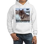 Wolf YNP, Wyoming Hooded Sweatshirt