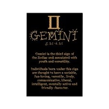 Gemini Rectangle Magnet (100 pack)