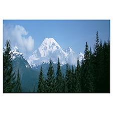 Mt Ranier Mt Ranier National Park WA