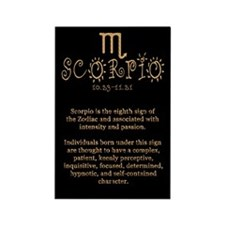 Scorpio Rectangle Magnet (100 pack)