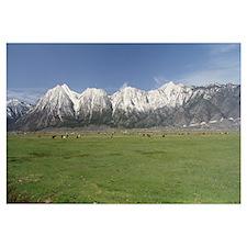 Sierra Nevada Range NV