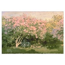 Lilac in the Sun, 1873 (oil on canvas)