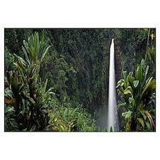 Hawaii, Akaka Falls State Park