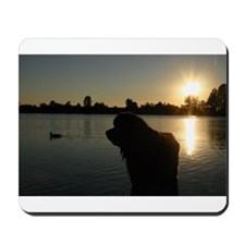 Mousepad Newfy Sunset
