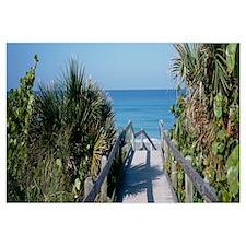 Wooden Walkway Venice FL