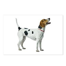 Foxhound Postcards (Package of 8)