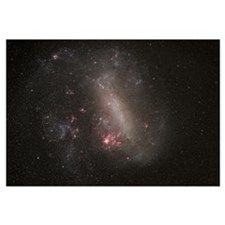 The Large Magellenic Cloud a satellite galaxy of t