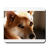 Shiba Inu Mousepad