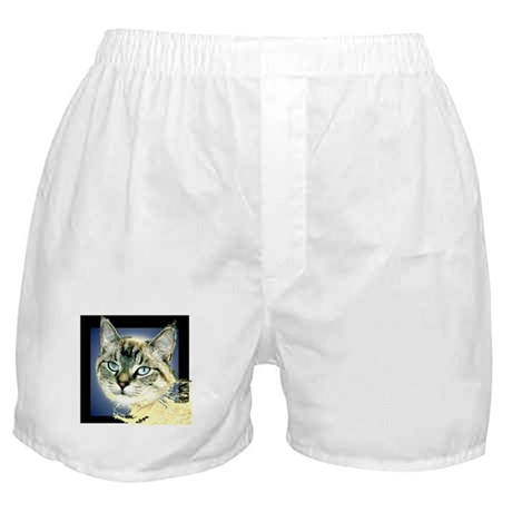Blue Eyed Kitten Boxer Shorts