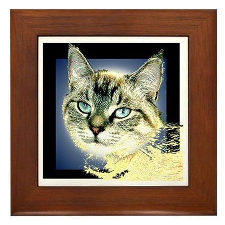 Blue Eyed Kitten Framed Tile
