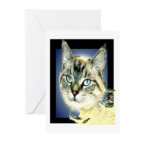 Blue Eyed Kitten Greeting Cards (Pk of 10)
