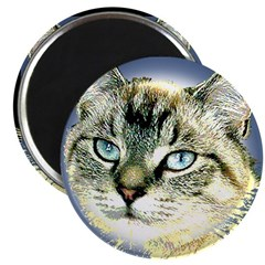 "Blue Eyed Kitten 2.25"" Magnet (100 pack)"