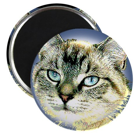 "Blue Eyed Kitten 2.25"" Magnet (10 pack)"