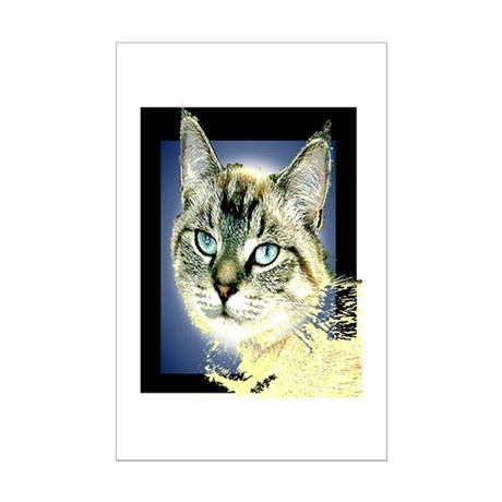 Blue Eyed Kitten Mini Poster Print