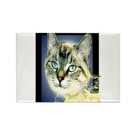 Blue Eyed Kitten Rectangle Magnet
