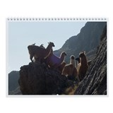 Wall Calendar: A Journey Through South America