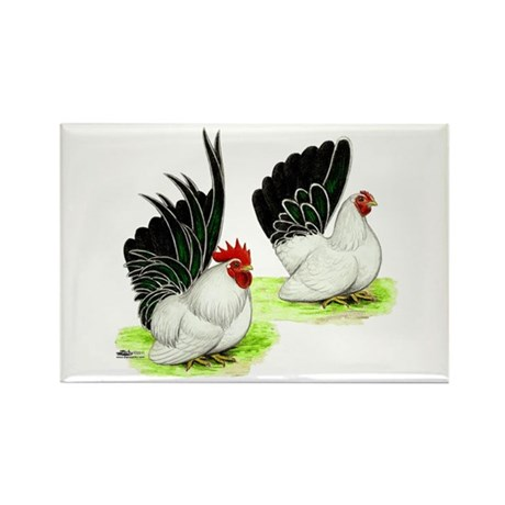 Japanese Bantams Rectangle Magnet (100 pack)