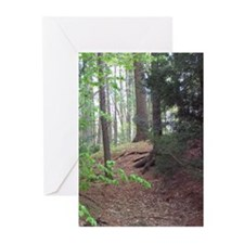 Serene Greeting Cards (Pk of 10)