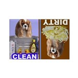 Cavalier (Blenheim) Rectangle Magnet (10 pack)