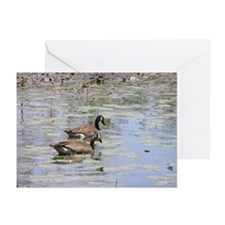 Geese Pair Greeting Cards (Pk of 10)