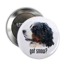 "got snow? 2.25"" Button (100 pack)"