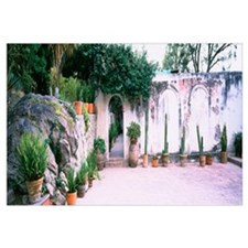 Potted plants in courtyard of a house, San Miguel