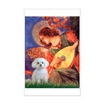 Mandolin Angel / Maltese Mini Poster Print