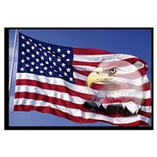 Bald Eagle on Flag