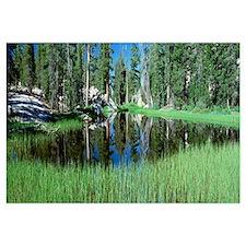 California, Yosemite National Park, High Country,