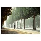France, Paris, Avenue des Champs Elysees, man walk