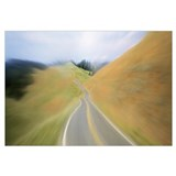 California, Marin County, road