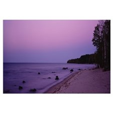 Trees on a beach, Union Bay, Lake Superior, Upper