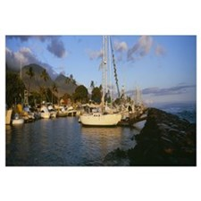 Sailboats in the bay Lahaina Harbor Lahaina Maui H