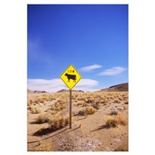 Animal crossing sign at a road side in the desert,