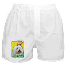 Birthday Cupcake - Coton de Tulear Boxer Shorts