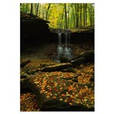 Waterfall in a forest, Blue Hen Falls, Cuyahoga Va