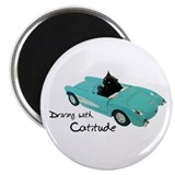 Driving with Catitude Magnet