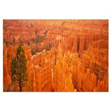 High angle view of rock formations, Bryce Canyon N