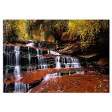 Waterfall in a forest, North Creek, Zion National
