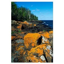Lichen-covered boulders on Lake Superior shoreline