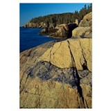 Mount Desert Island shoreline, Acadia National Par