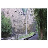 Waterfall in a forest, Taughannock Falls, Taughann