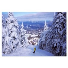 Rear view of a person skiing, Stratton Mountain Re