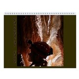 Caves Wall Calendar